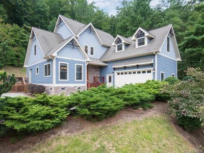 Asheville Single Family Home For Sale: 64 Village Pointe Lane