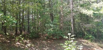 Bat Cave, Black Mountain, Chimney Rock, Columbus, Gerton, Lake Lure, Mill Spring, Rutherfordton, Saluda, Tryon, Union Mills Residential Lots & Land For Sale: 8 Destiny Drive #8