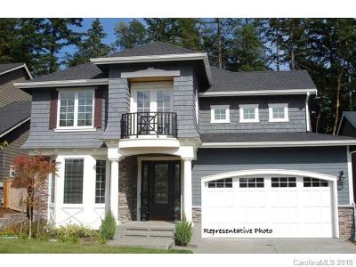 Davidson Single Family Home For Sale: 919 Naples Drive #12