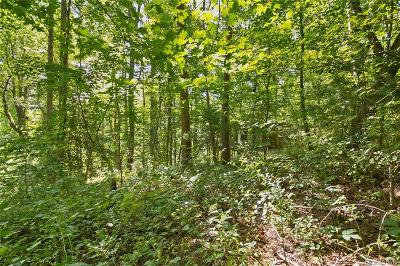 Buncombe County Residential Lots & Land For Sale: 11 Toadshade Lane