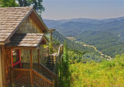 Hot Springs NC Single Family Home For Sale: $795,000