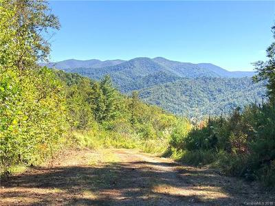 Buncombe County, Haywood County, Henderson County, Madison County Residential Lots & Land For Sale: 99999 Hawks Landing