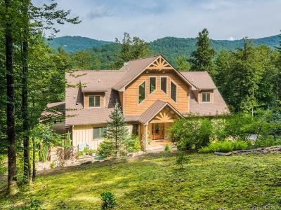 Asheville Single Family Home For Sale: 111 Jones Cove Road