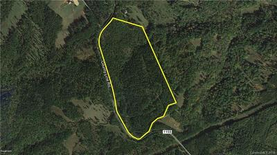Rutherfordton Residential Lots & Land For Sale: 42.36 Ac County Line Road #Tract 2