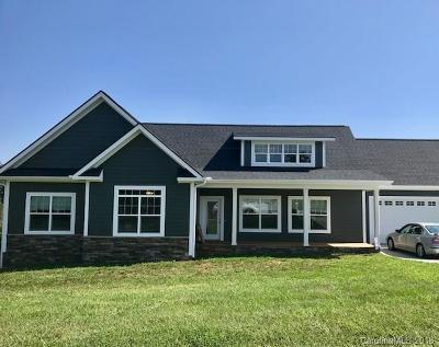Candler Single Family Home For Sale: 311 Hookers Gap Road