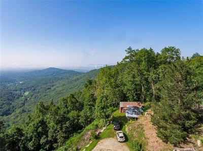Asheville Single Family Home For Sale: 194 Busbee Mountain Road