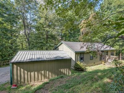 Saluda Single Family Home For Sale: 120 Moonshine Trace