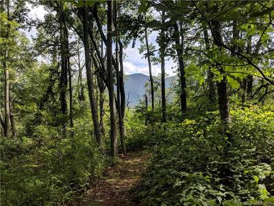 Asheville Residential Lots & Land For Sale: 13+ Acres Elk Mountain Scenic Highway