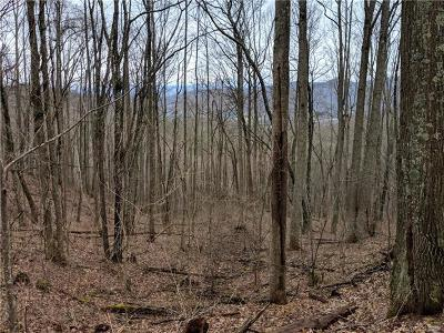 Asheville Residential Lots & Land For Sale: 14+ Acres Elk Mountain Scenic Highway
