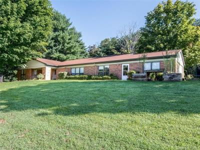 Asheville Single Family Home For Sale: 65 Lees Creek Road