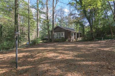 Asheville Single Family Home For Sale: 33 Busbee Road