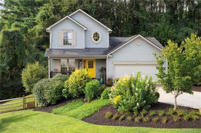 Asheville Single Family Home For Sale: 20 Village East Court