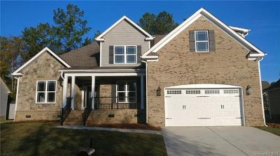 Rock Hill Single Family Home For Sale: 1723 Townsend Lane