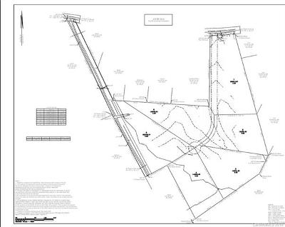 Mill Spring Residential Lots & Land For Sale: Big Level Road #4