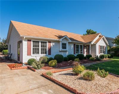 Huntersville Single Family Home For Sale: 16536 Glenfurness Drive