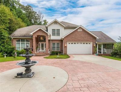 Hendersonville Single Family Home For Sale: 3523 Evans Road