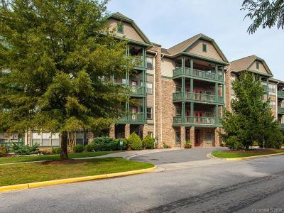 Asheville Condo/Townhouse Under Contract-Show: 9 Kenilworth Knoll #103