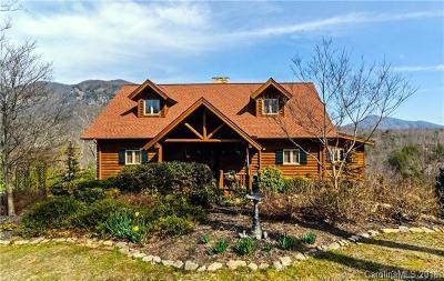 Lake Lure Single Family Home For Sale: 159 Deer Trail #29 +19