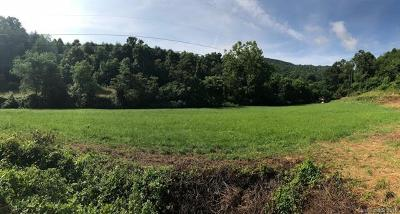 Candler Residential Lots & Land Under Contract-Show: 32 Cleves Drive