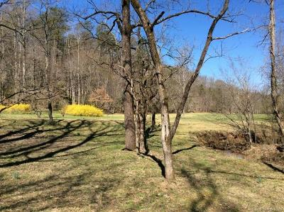 Polk County, Rutherford County Single Family Home For Sale: 1 Fire Tower Road