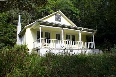 Transylvania County Single Family Home For Sale: 6220 Parkway Road