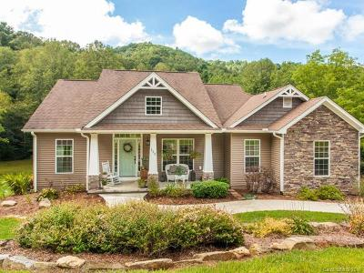 Weaverville Single Family Home For Sale: 153 Ox Creek Road