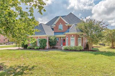 Charlotte Single Family Home For Sale: 9721 Arlington Oaks Drive