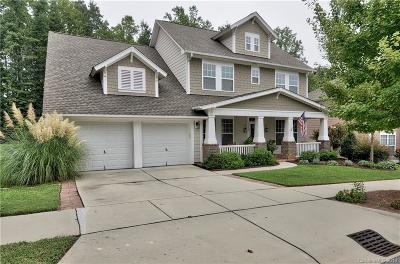 Cornelius Single Family Home For Sale: 8920 Lake Pines Drive