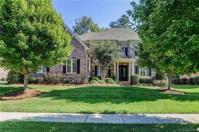 Huntersville Single Family Home For Sale: 13040 Long Common Parkway