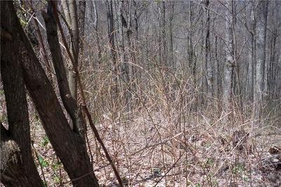Waynesville Residential Lots & Land For Sale: Lot 503 Slippery Rock Road