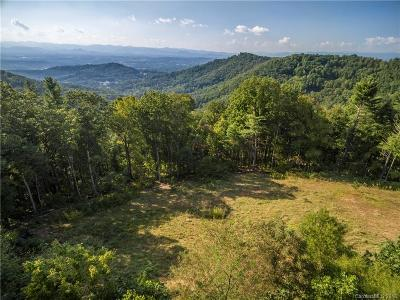 Asheville Residential Lots & Land For Sale: 76 Villa Nova Drive
