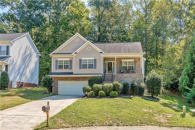Waxhaw Single Family Home For Sale: 8109 Kingston Drive