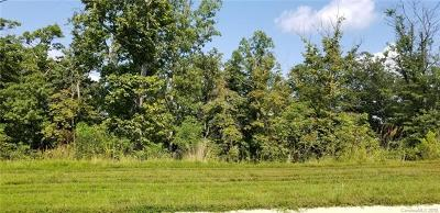 Arden Residential Lots & Land For Sale: 19 Craftsman Overlook Ridge #32