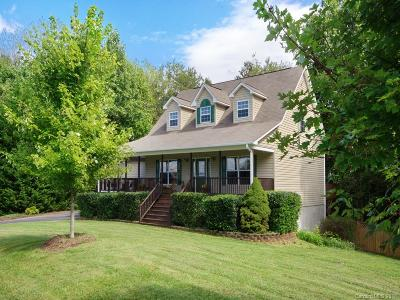 Asheville Single Family Home For Sale: 255 Ferguson Drive