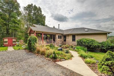 Weaverville Single Family Home For Sale: 47 Sams Road