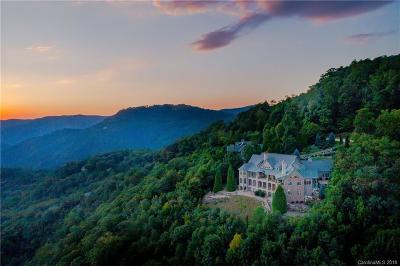 Travelers Rest SC Single Family Home For Sale: $2,695,000