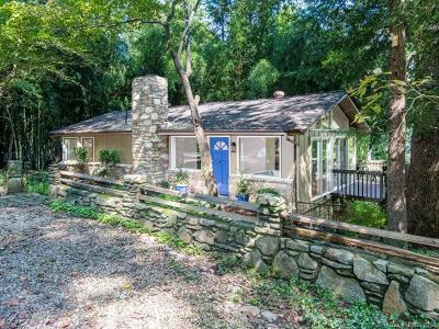 Asheville Single Family Home For Sale: 221 Lakewood Drive