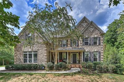 Matthews, Mint Hill Single Family Home For Sale: 9944 Stonebridge Way