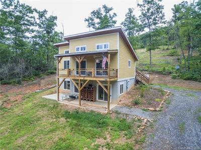 Black Mountain Single Family Home For Sale: 10 Circle Drive