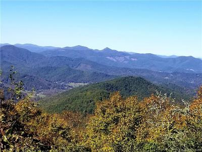 Candler Residential Lots & Land For Sale: 26.81 Acres OFF Black Oak Cove Road