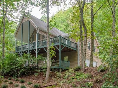 Asheville Single Family Home For Sale: 15 Dairy Gap Road