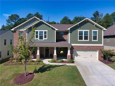 Fort Mill Single Family Home For Sale: 1032 Arges River Drive