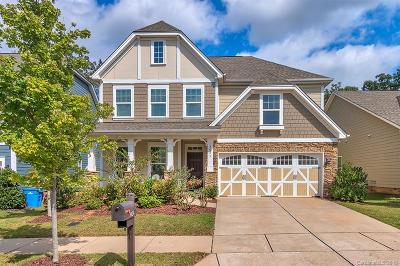 Waxhaw Single Family Home For Sale: 3024 Fallondale Road