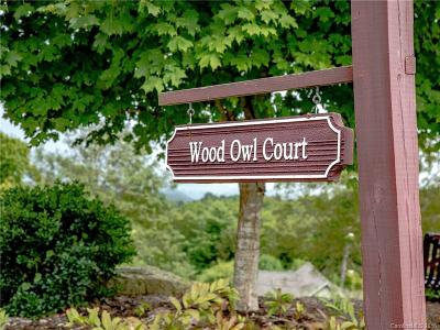 Henderson County Residential Lots & Land For Sale: 1736 Wood Owl Court