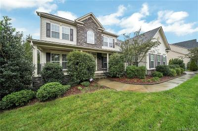 Tega Cay Single Family Home Under Contract-Show: 535 Placid Court