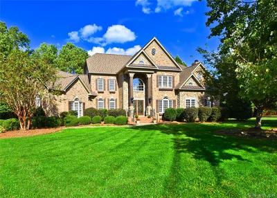 Waxhaw, Weddington Single Family Home For Sale: 9200 Skipaway Drive