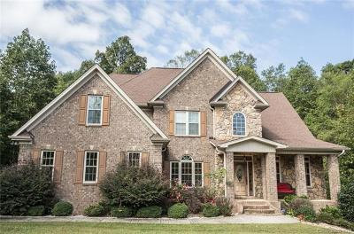 Statesville Single Family Home For Sale: 206 Donsdale Drive