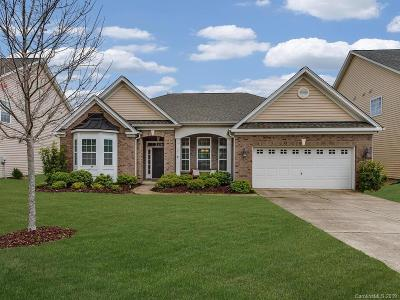 Tega Cay Single Family Home For Sale: 827 Solandra Way