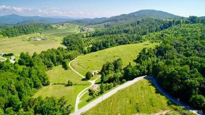 Hendersonville Residential Lots & Land For Sale: 859 Summer Road