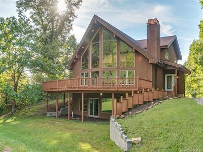 Hendersonville Single Family Home For Sale: 49 Western Eagle Drive
